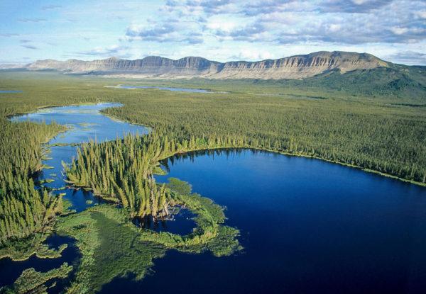 ducks unlimited canada national boreal program