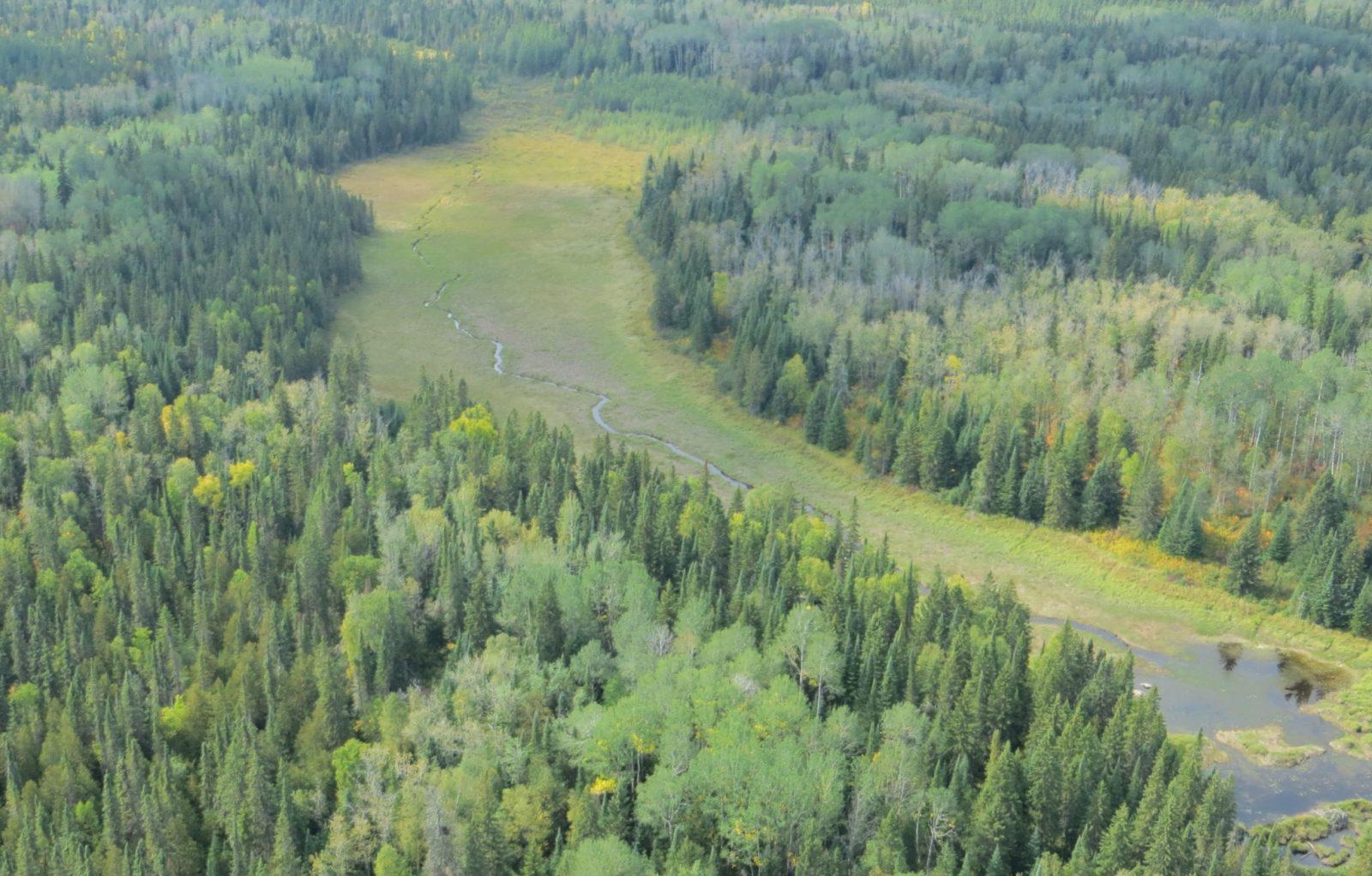 kapuskasing ontario wetlands