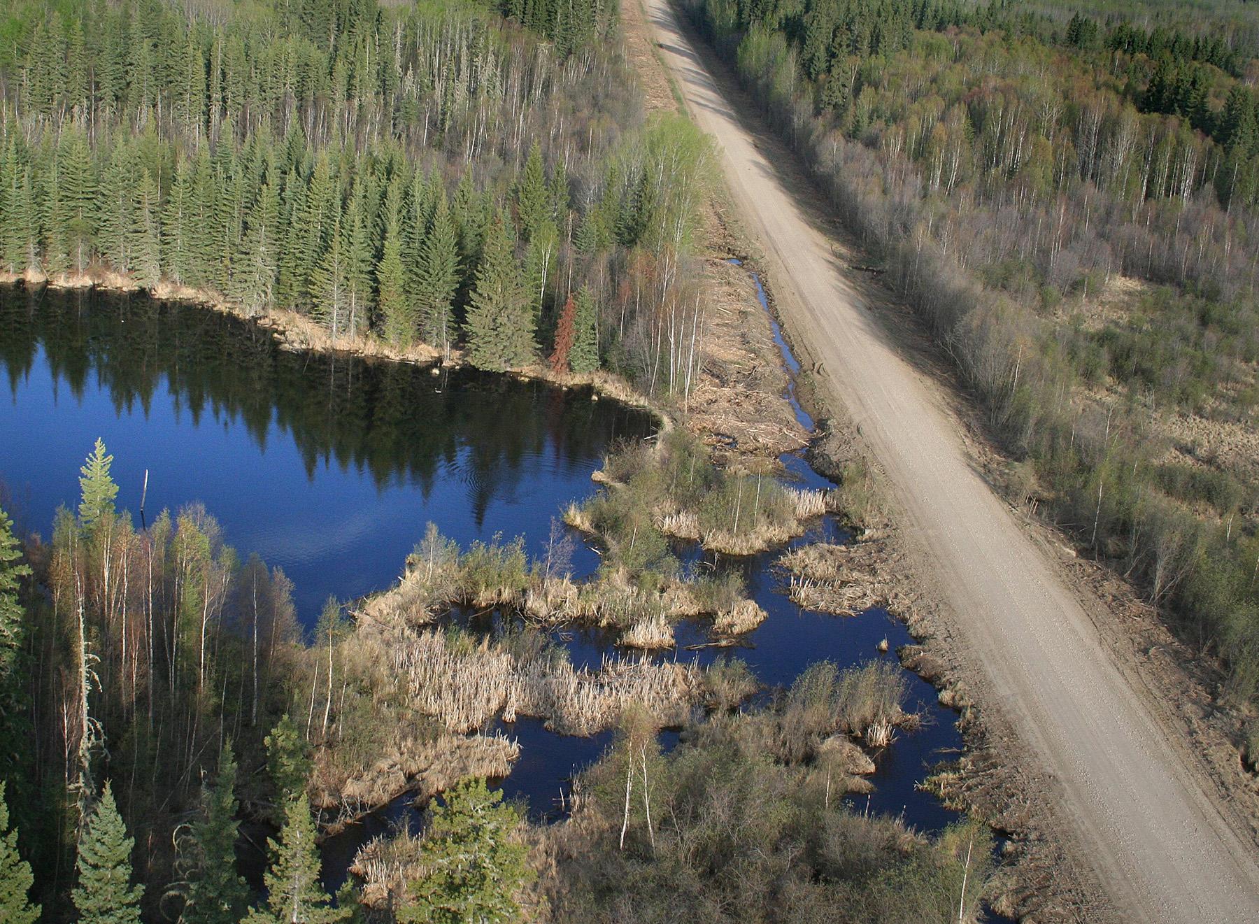wetland-road-hydrologic-impairment