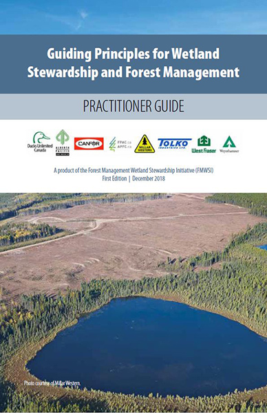 guiding principles for wetland stewardship and forest management practitioner guide