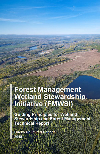 guiding principles for wetland stewardship and forest management technical report