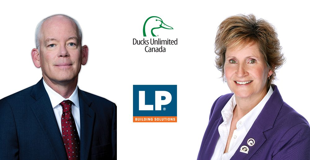 LP and DUC Cover Image