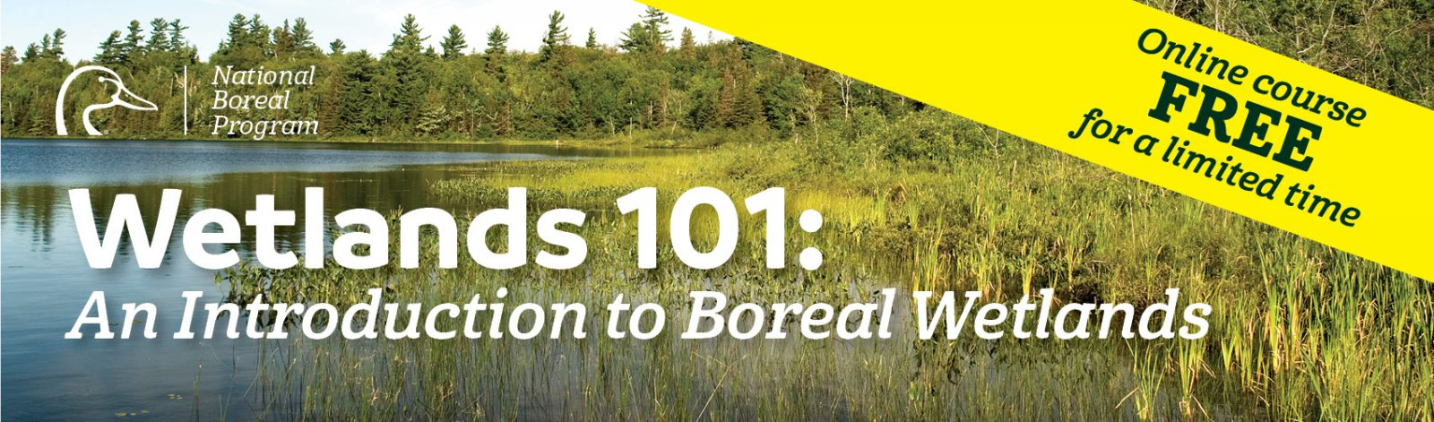 free-wetlands-course